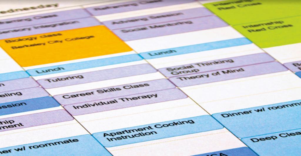 CIP's comprehensive student schedule